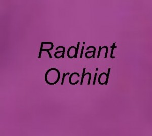 Radiant Orchid Splashback